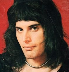 Discover Freddie Mercury jr, band in Alvin, TX, USA. Rate, follow, send a message and read about Freddie Mercury jr on LiveTrigger.