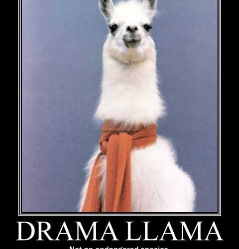 Discover LLAMA DRAMA, jazz band in Croydon, Nuovo Galles del Sud, Australia. Rate, follow, send a message and read about LLAMA DRAMA on LiveTrigger.