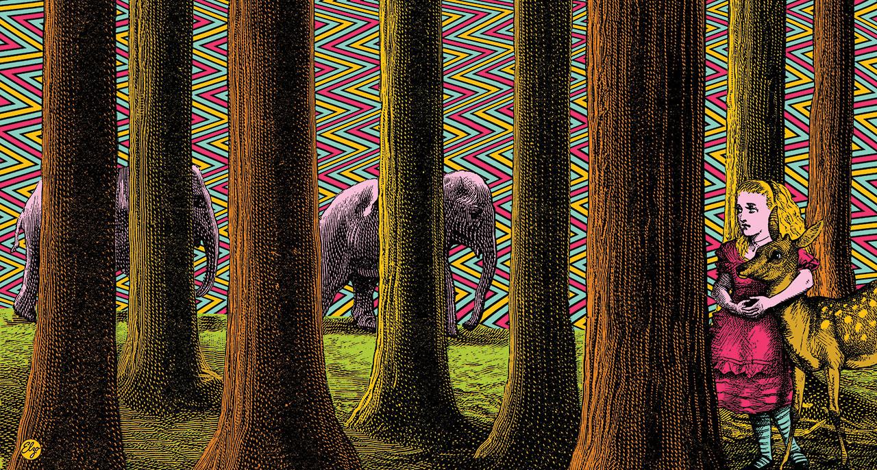 Visual Satiation: Elzo Durt gallery: image 12 of 11