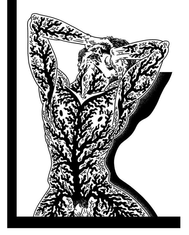 Visual Satiation: Zigendemonic gallery: image 25 of 19