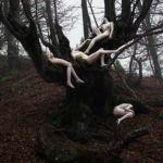 Visual Satiation: Elena Helfrecht gallery: image 2 of 13