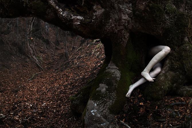 Visual Satiation: Elena Helfrecht gallery: image 24 of 13