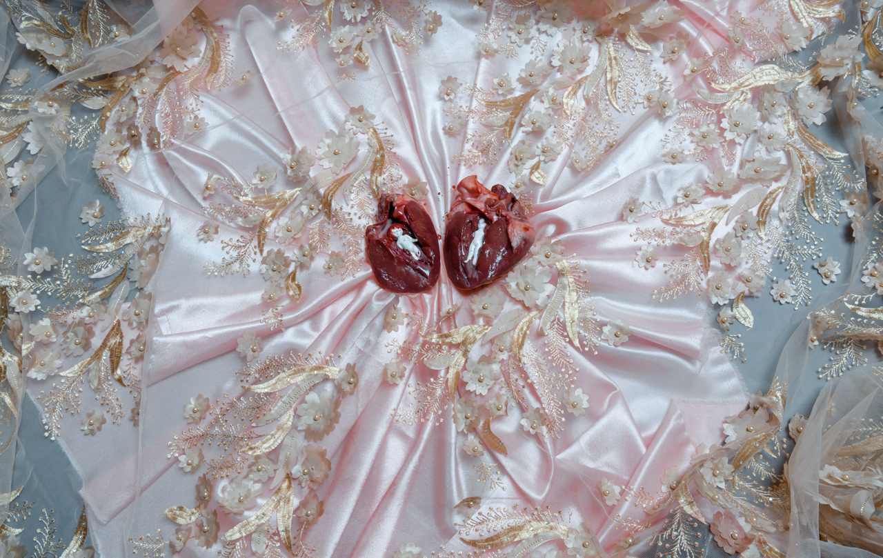 Visual Satiation: Elena Helfrecht gallery: image 21 of 13
