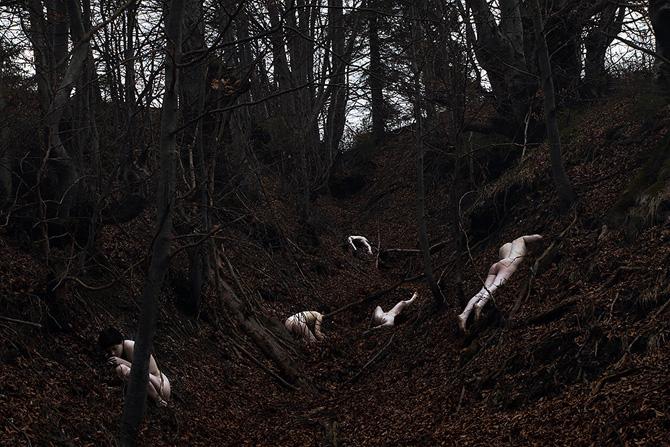 Visual Satiation: Elena Helfrecht gallery: image 23 of 13