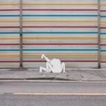Visual Satiation: DAAN BOTLEK gallery: image 15 of 15